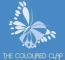 Logo Franquicia The coloured clap